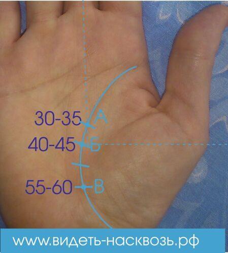 как узнать продолжительность жизни по руке фото название